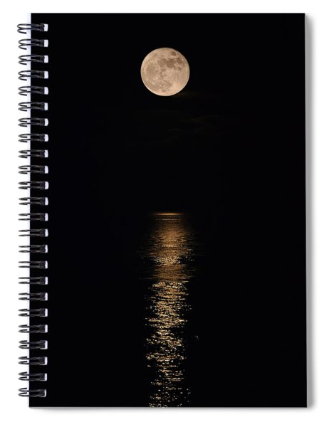 Holiday Magic - Lunar Art Spiral Notebook