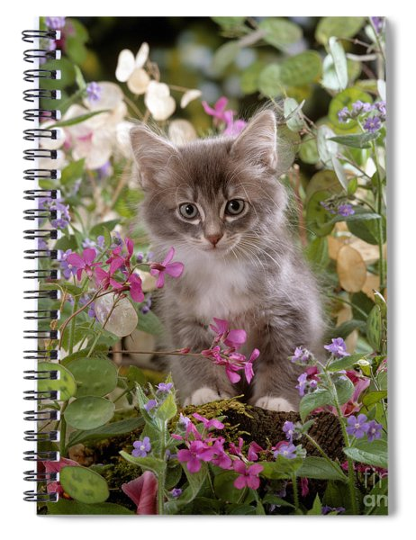 Honesty Is My Name Spiral Notebook