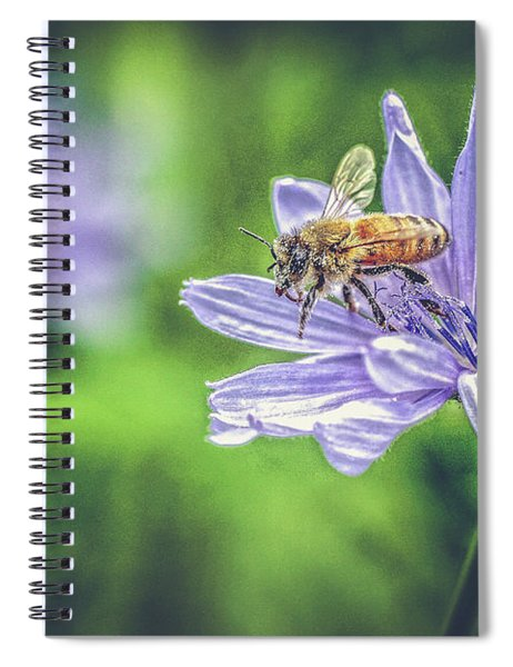 Honey Bee And Flower Spiral Notebook
