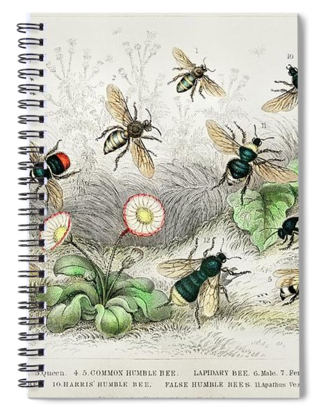Honey Bees, Humble Bee Spiral Notebook