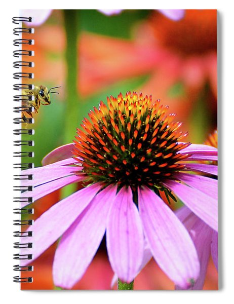Honeybee Flying To A Coneflower Spiral Notebook