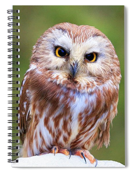 Hoo You Lookin At Spiral Notebook
