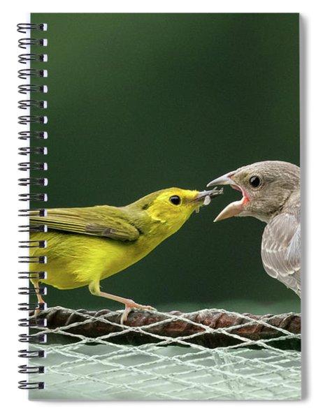 Hooded Warbler Feeding Cowbird Spiral Notebook