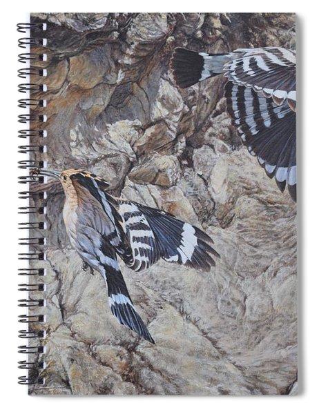 Hoopoes Feeding Spiral Notebook