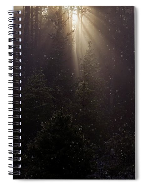 Hope And Faith - Winter Art Spiral Notebook