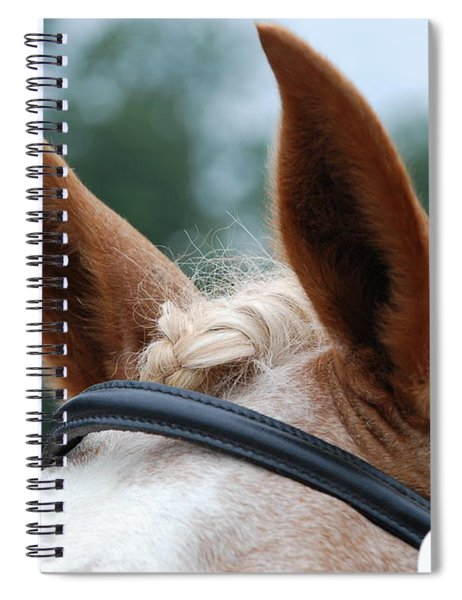 Horse At Attention Spiral Notebook