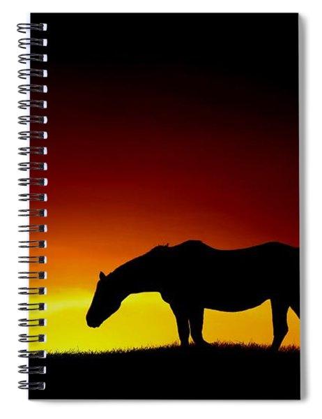 Horse At Sunset Spiral Notebook