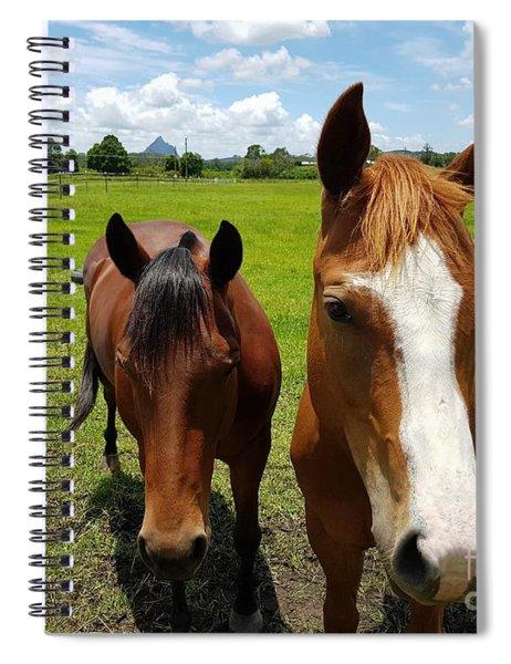 Horse Friendship Spiral Notebook