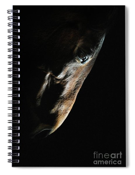 Horse Head Strobist Art Portrait Spiral Notebook