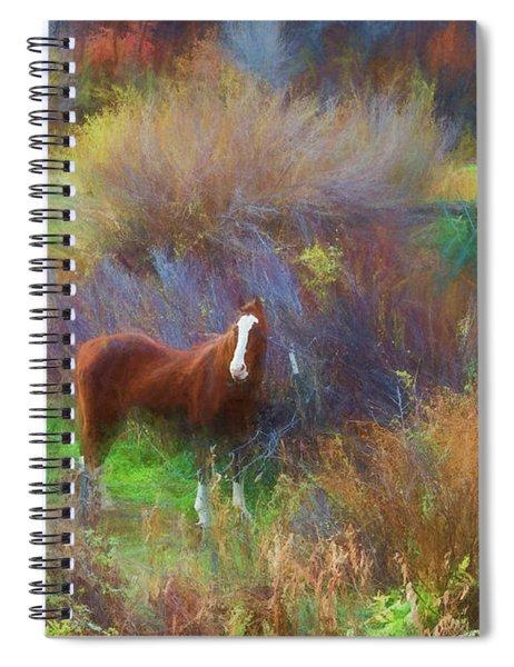 Horse Of Many Colors Spiral Notebook