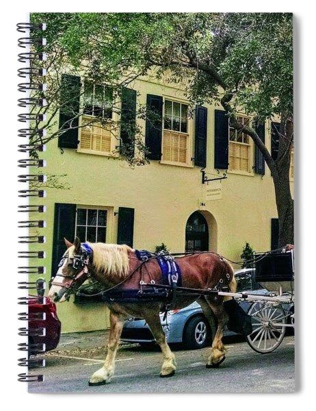 Horse Stories Spiral Notebook