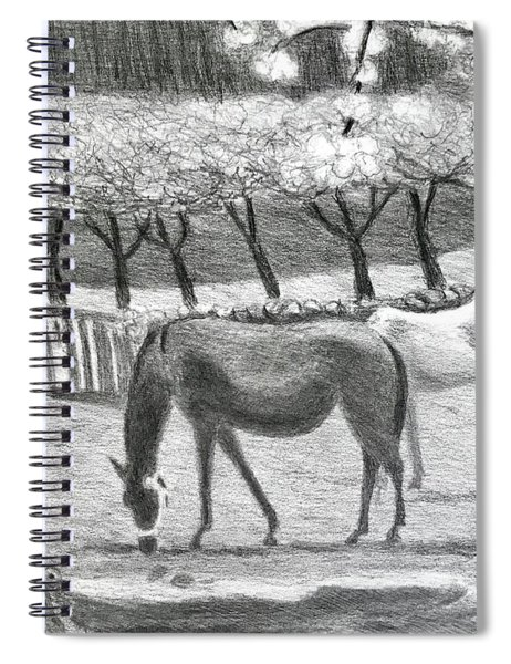 Horses And Trees In Bloom Spiral Notebook