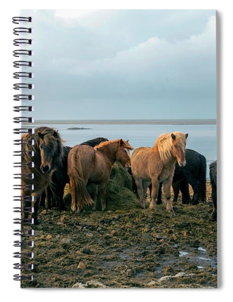 Horses In Iceland Spiral Notebook
