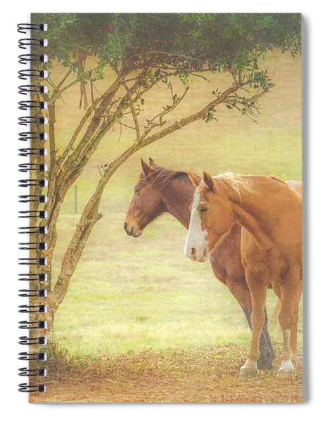 Horses In The Meadow Spiral Notebook