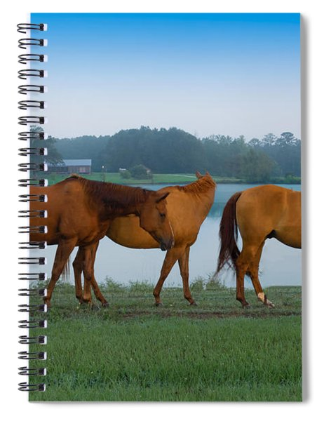 Horses On The Walk Spiral Notebook