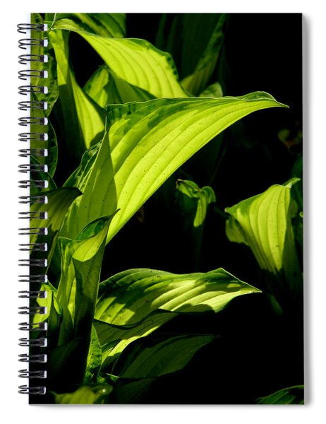 Spiral Notebook featuring the photograph Hosta 561 by Brian Gryphon