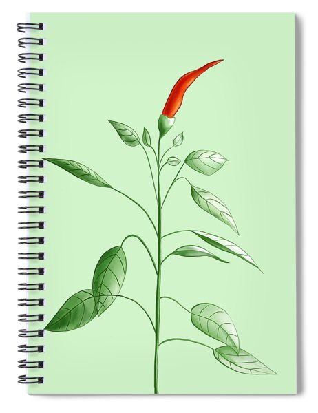 Hot Chili Pepper Plant Botanical Illustration Spiral Notebook
