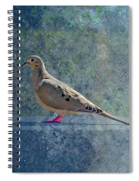 Spiral Notebook featuring the photograph How Can You Just Leave Me Standing by Alison Frank