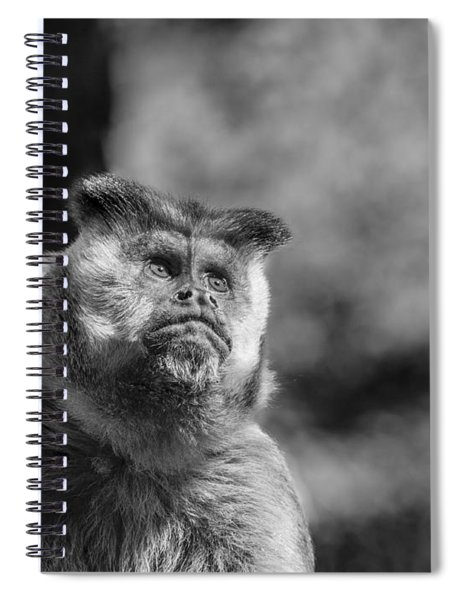 Human Thoughts Spiral Notebook