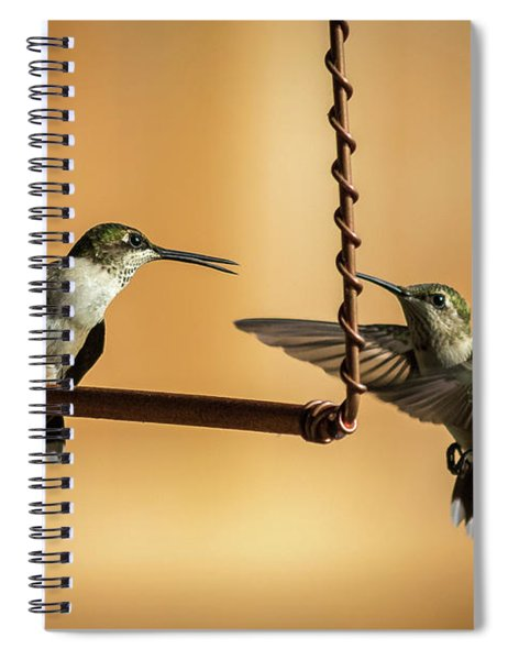 Humming Birds Spiral Notebook