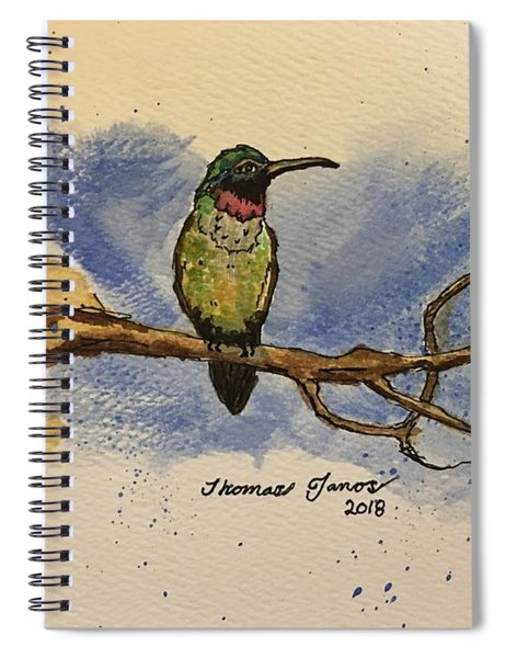 Hummingbird At Rest Spiral Notebook