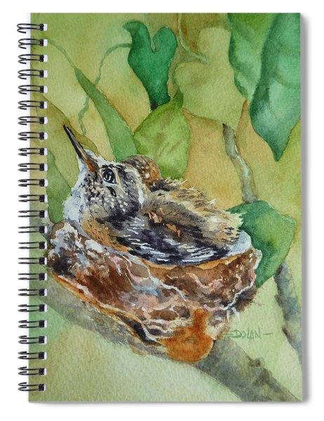 Hummingbird Nestiing Spiral Notebook