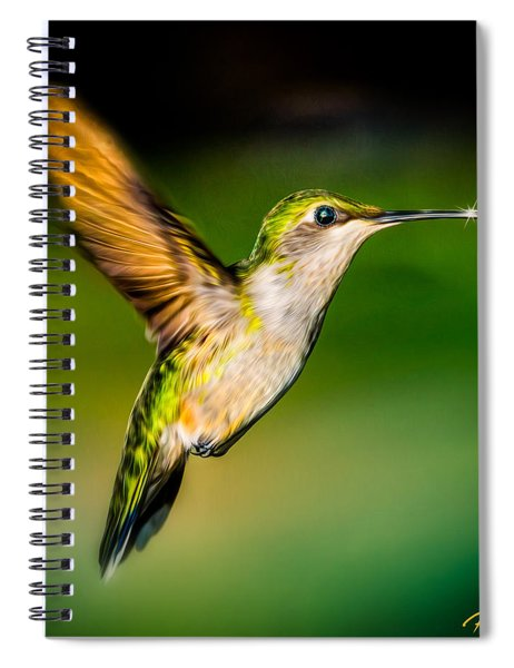 Hummingbird Sparkle Spiral Notebook