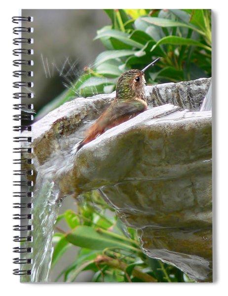 Hummingbirds Do Take Baths Spiral Notebook