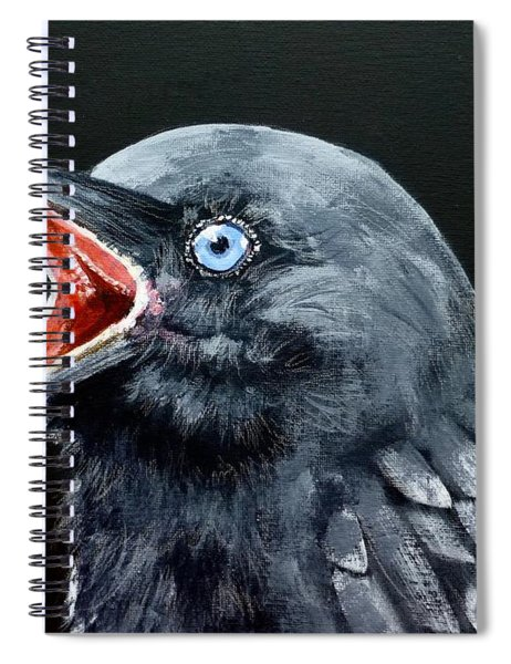 Hungry Baby Raven Spiral Notebook