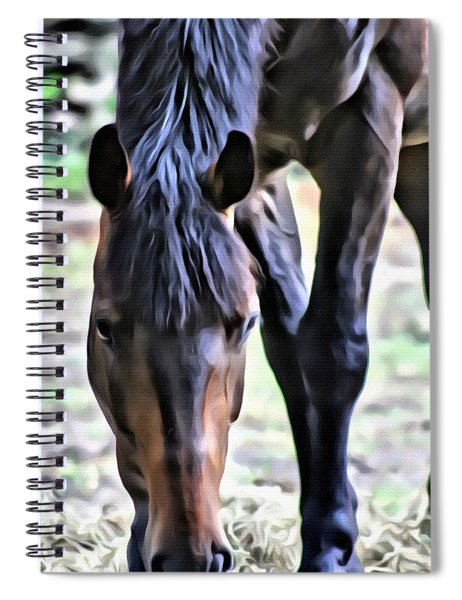 Hungry Horse 2 Spiral Notebook