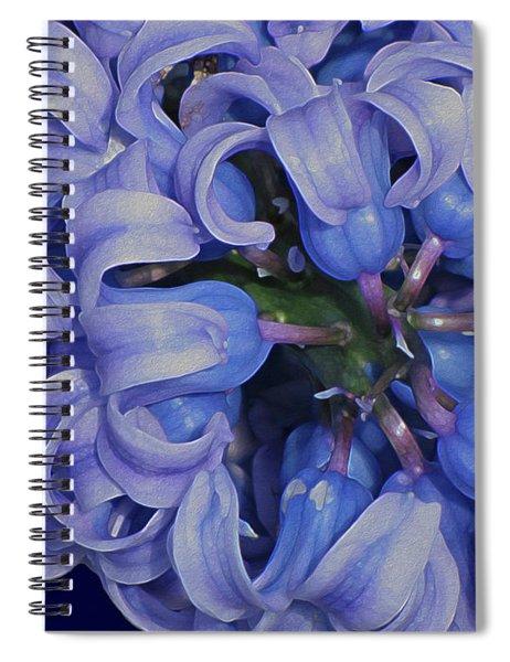 Hyacinth Curls Spiral Notebook
