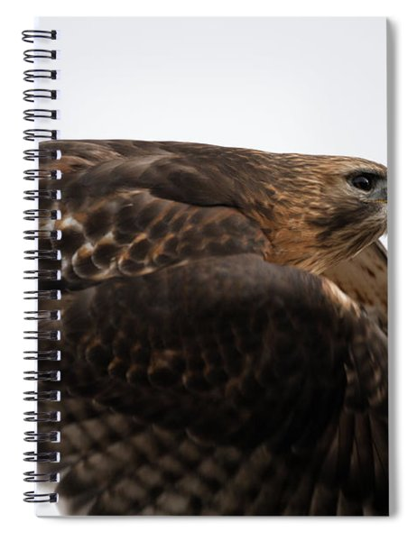 Hybrid Hawk Flyby  Spiral Notebook