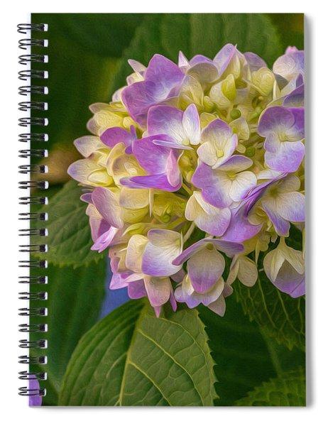 Hydrangea 2 Spiral Notebook