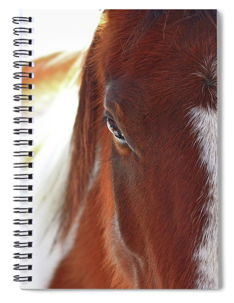 I Got My Eyes On You Spiral Notebook