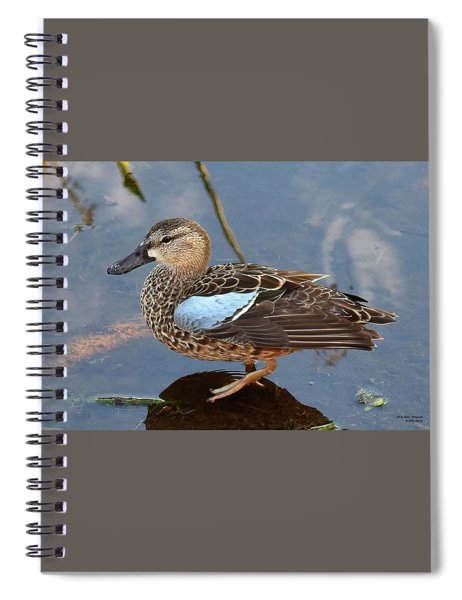I Really Am A Green Winged Teal Spiral Notebook