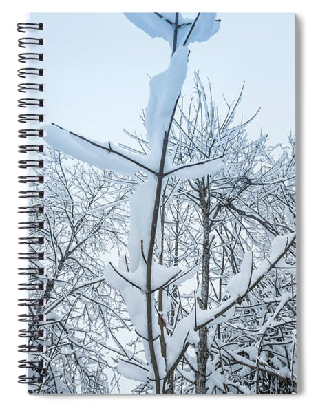 I Stand Alone- Spiral Notebook