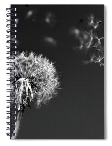 I Wish I May I Wish I Might Love You Spiral Notebook