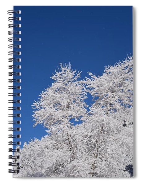 Ice Crystals Ute Pass Cos Co Spiral Notebook