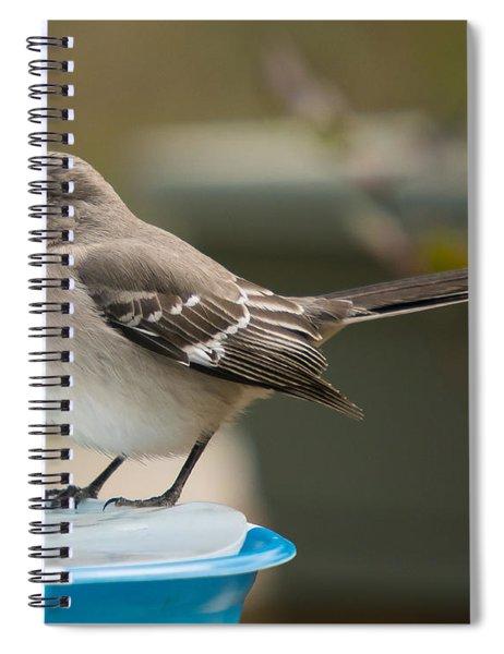 Ice Water Spiral Notebook