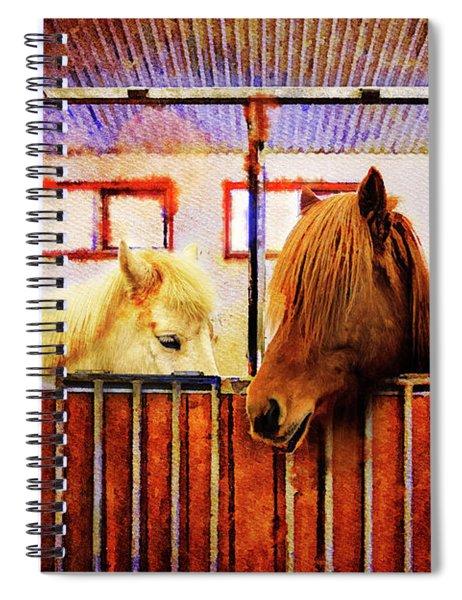Icelandic Horses Of Hester-stables 3 Spiral Notebook