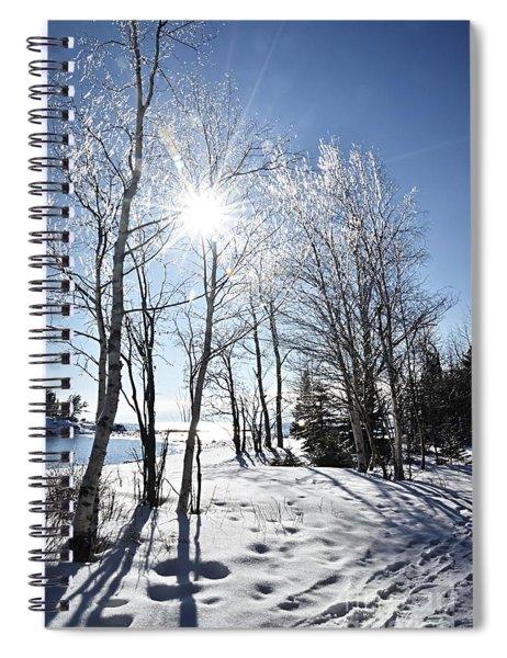 Icy Sunburst Spiral Notebook