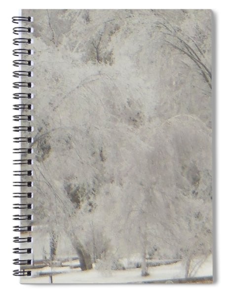 Icy Trees Spiral Notebook