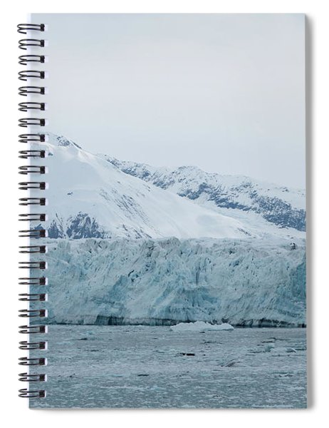 Icy Wonderland Spiral Notebook