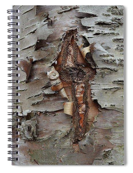 Idiosynchratic Process Spiral Notebook