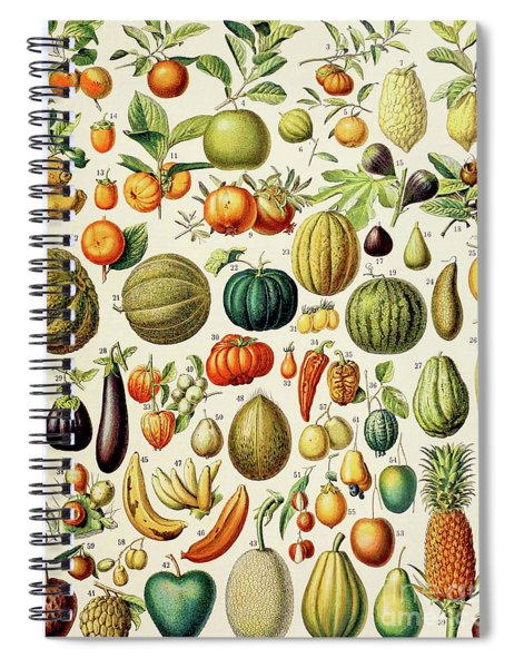 Illustration Of Fruit Spiral Notebook
