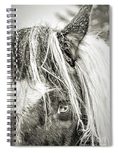 I'm So Cold  Spiral Notebook