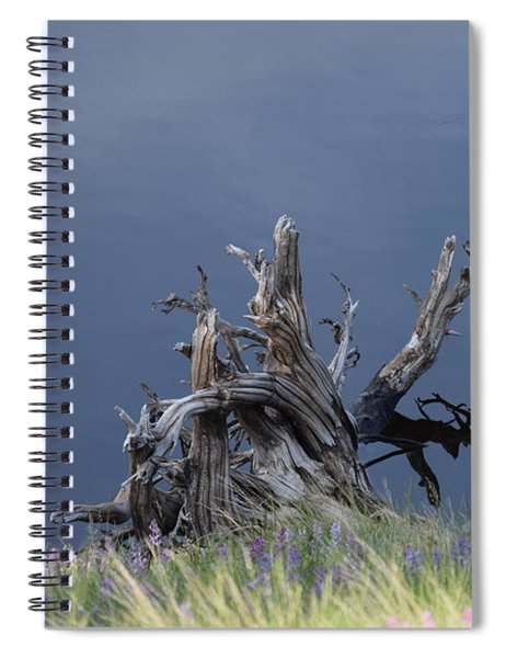 Stump Chambers Lake Hwy 14 Co Spiral Notebook