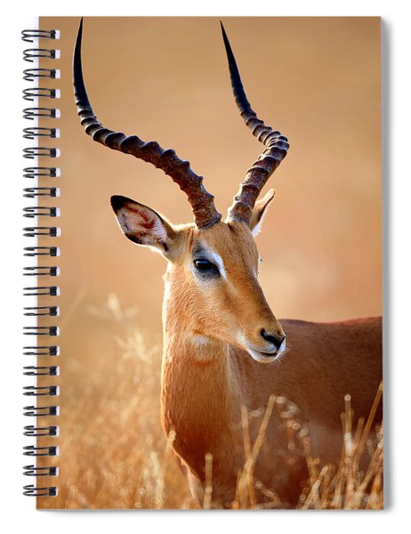 Impala Male Portrait Spiral Notebook