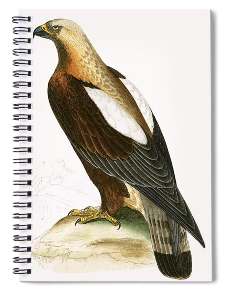 Imperial Eagle Spiral Notebook