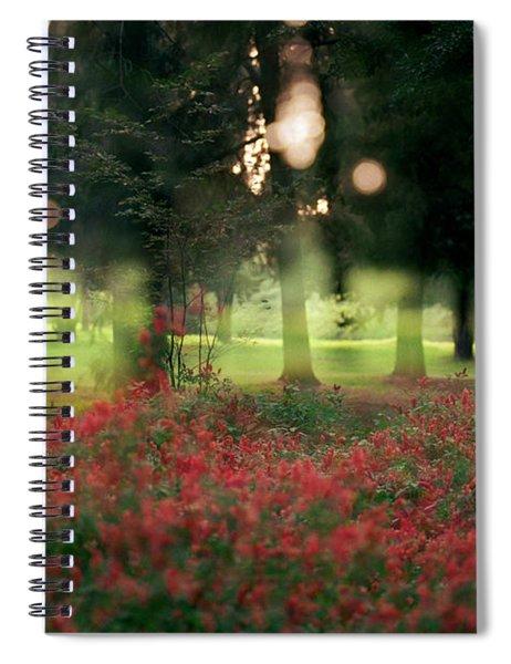 Impression At The Yarkon Park Spiral Notebook